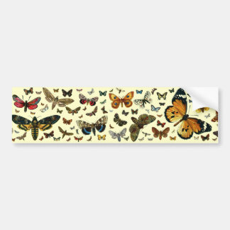 European Butterfly Collage Bumper Sticker
