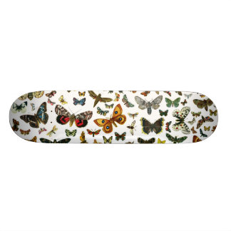European Butterfly Collage Skateboard Deck