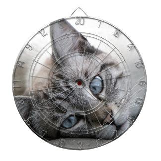 European cat portrait dartboard