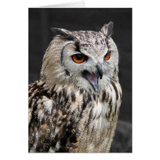 European Eagle Owl Card