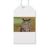 European Eagle Owl Gift Tags