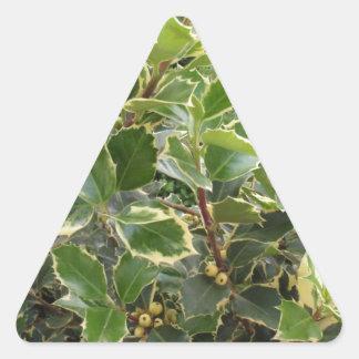 European Holly Triangle Sticker