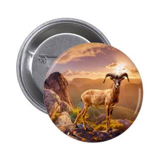 European Mouflon Pinback Button
