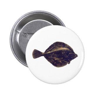 European Plaice Button