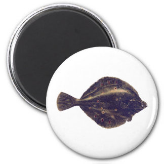 European Plaice Magnet