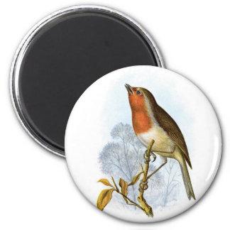 European Robin - Erithacus rubecula 2 Inch Round Magnet