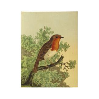 European Robin Wood Poster