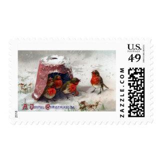 European Robins Beneath Flowerpot Vintage Xmas Postage