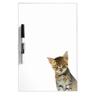European Shorthair Kitten Watercolor Painting Dry Erase Board
