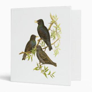 European Starling Binders
