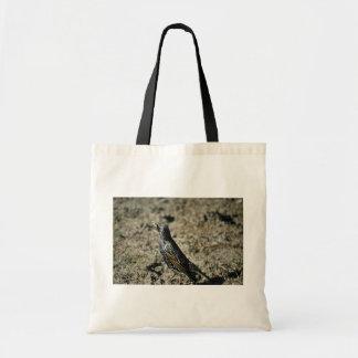 European Starling Budget Tote Bag