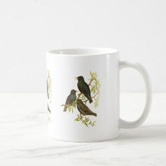European Starling Coffee Mug