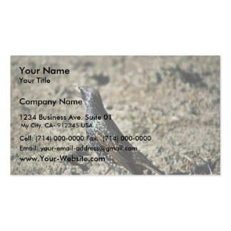 European Starling Double-Sided Standard Business Cards (Pack Of 100)