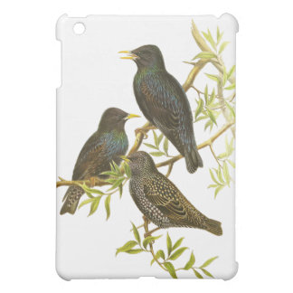 European Starling Cover For The iPad Mini