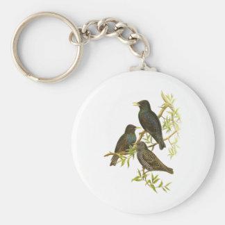 European Starling Key Chain