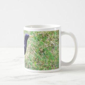 European Starling Mugs