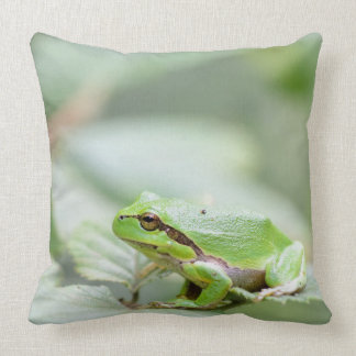 European tree frog in green throw pillow