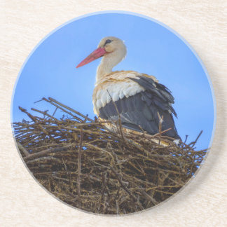 European white stork, ciconia, in the nest sandstone coaster