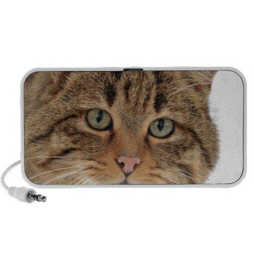 European Wildcat Portable Speakers