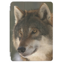 European Wolf iPad Air Cover