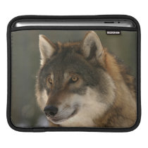 European Wolf iPad Sleeve