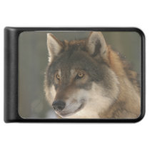 European Wolf Power Bank