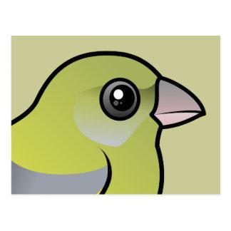 Europeo Greenfinch Tarjeta Postal