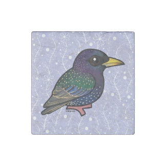Europeo Starling de Birdorable Imán De Piedra