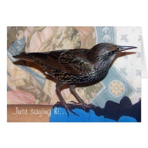 Europeo Starling, Mortimer, tarjeta de nota