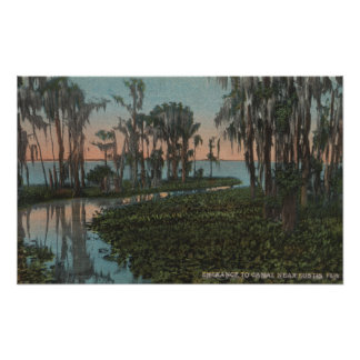 Eustis, Florida - View of Swampy Canal Poster