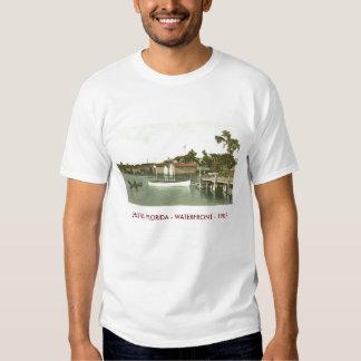 EUSTIS, FLORIDA - WATERFRONT - 1907 T-SHIRT