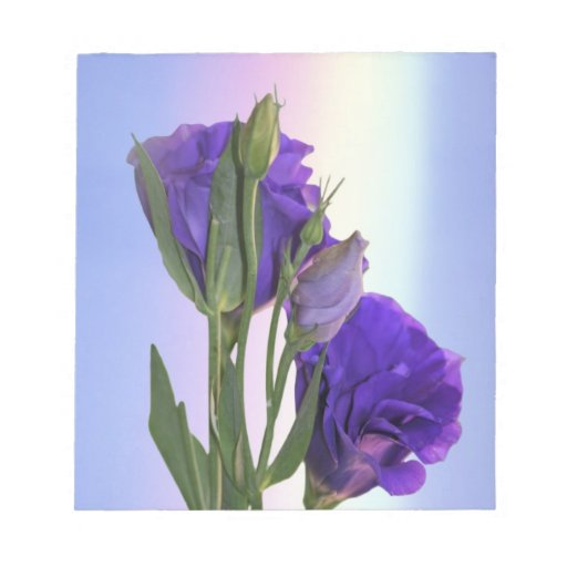 Eustoma Lissianthus purple Memo Note Pads