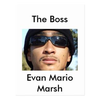 Evan Mario Marsh Postcard