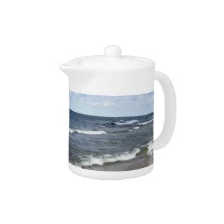 Evangola State Park - Lake Erie Teapot