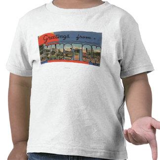 Evanston, Illinois - Large Letter Scenes Tee Shirts