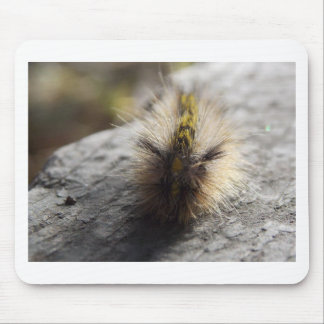 Even Catipilars Grow Up To Be Butterfies Mouse Pad
