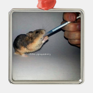 Even hamsters have to take meds! metal ornament