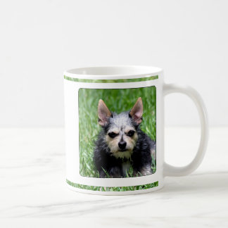 Even my dog knows you suck coffee mugs