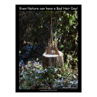 """""""Even Nature Can Have A Bad Hair Day!"""" Print"""
