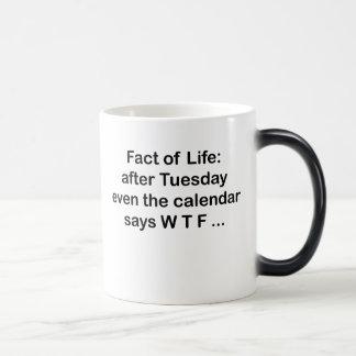 Even the calendar says WTF Magic Mug