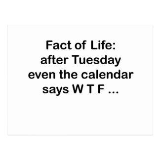 Even the calendar says WTF Postcard