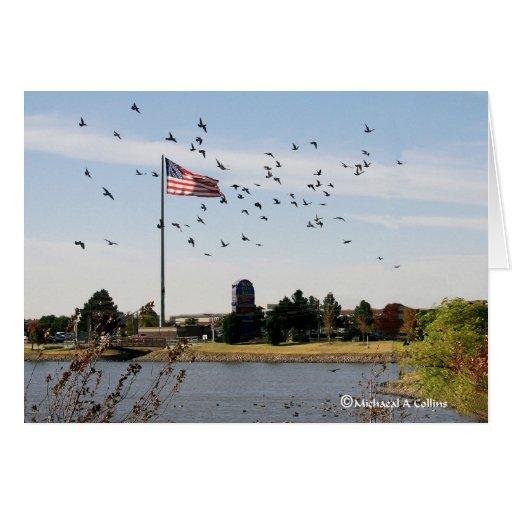 Even the ducks love the USA Card