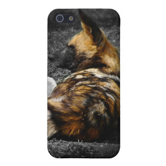 Even Wild Dogs rest Case For iPhone SE/5/5s