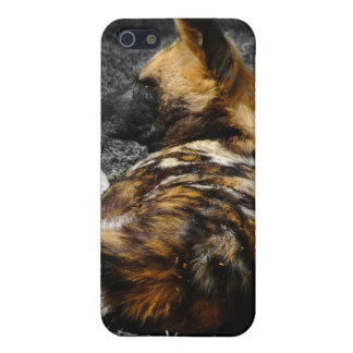 Even Wild Dogs rest iPhone SE/5/5s Cover