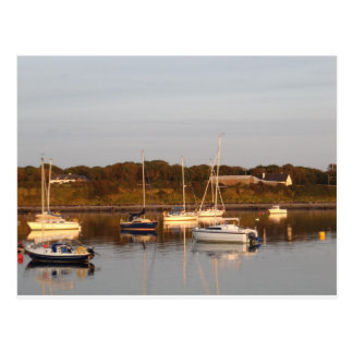 Evening at Renville Postcard