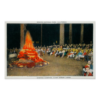 Evening Bonfire at Giant Forest Lodge Poster