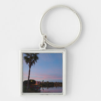 Evening By The Palm Tree Keychain