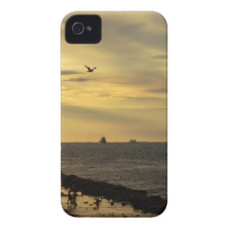 Evening iPhone 4 Covers