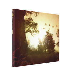 Evening Flying Geese Canvas Print