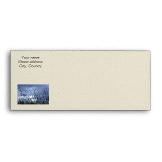 Evening grass envelope